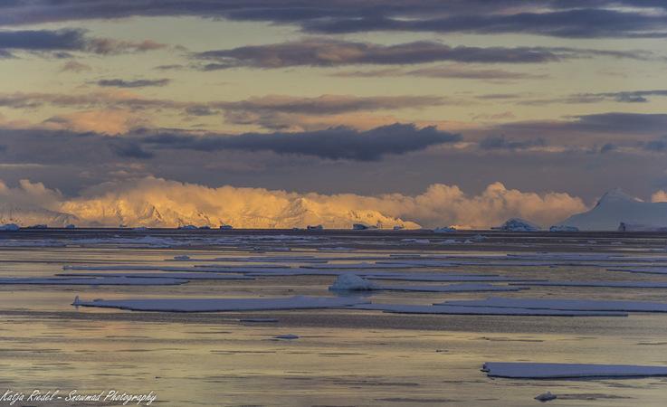 In diesem Jahr hat die antarktische Meereisbedeckung fast den im vergangenen Jahr aufgestellten