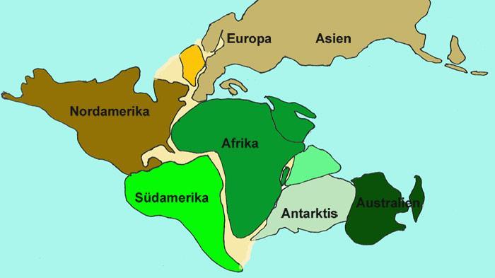 Gondwana umfasste vor ca. 40 Millionen Jahre die damals in einer Landmasse zusammenhängenden Kontinente Südamerika, Afrika, Antarktis, Australien, Madagaskar und Indien.