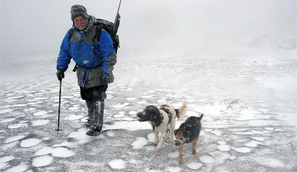 Gary Bowcock und die Jagdhunde Tama und Joker unterwegs durch die Schneeverwehungen am Strand der Sandy Bay zu Beginn der Jagd auf die Kaninchen im Macquarie Hochland.