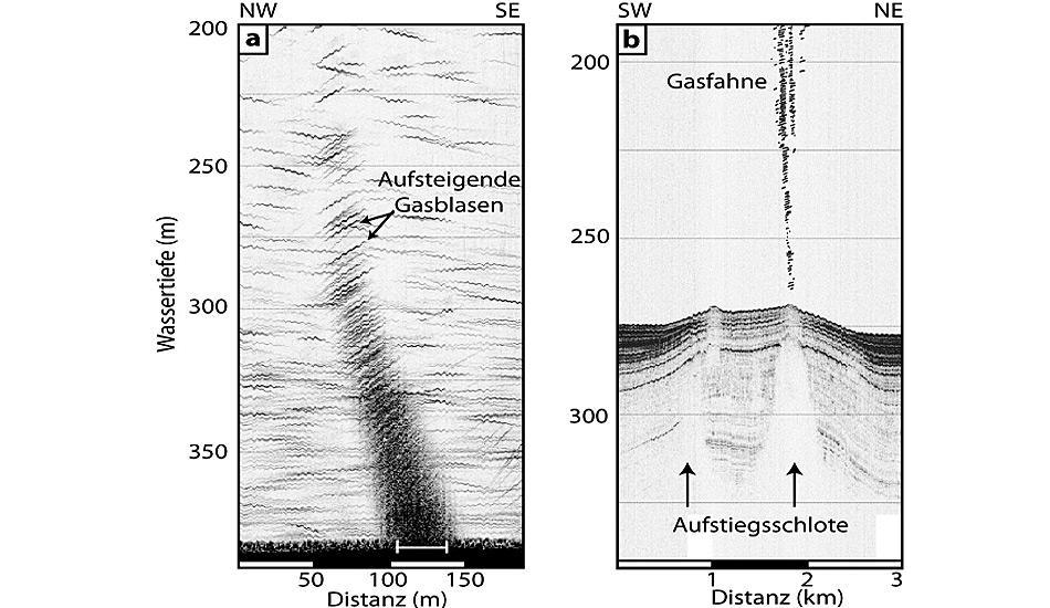 Die Echogramme zeigen eine Gasfahne in der Wassersäule (links) und Aufstiegsschlote, die das Methan im Meeresboden kanalisieren (rechts).