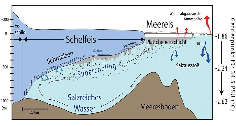 Schematische Darstellung der Entstehung von Plättcheneis im Südpolarmeer. Grafik: AWI, Mario Hoppmann
