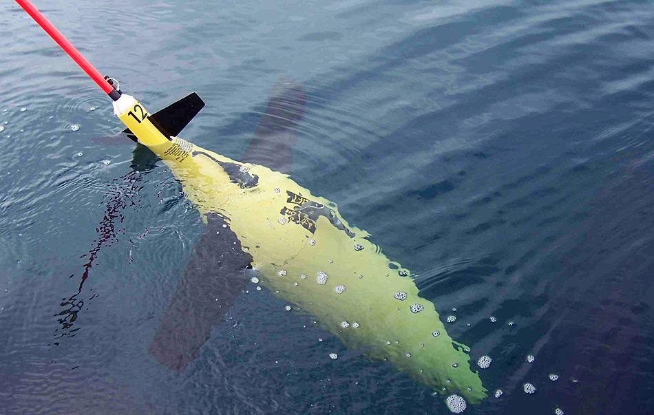 Die unabhängig treibenden Argos helfen Forschern den Zustand der Ozeane zu untersuchen. Dabei werden sie weltweit eingesetzt und genutzt. Bild: Katja Riedel