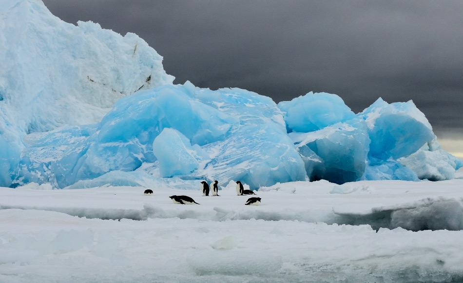 Die Antarktis zieht jedes Jahr über 35'000 Besucher aus aller Welt in ihren Bann. Die meisten Touristen reisen per Schiff zur antarktischen Halbinsel, um Pinguin & Co. bewundern zu können. Bild: Michael Wenger