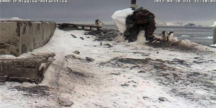 Trotz der extremen Witterungsbedingungen funktionieren die Kameras einwandfrei.