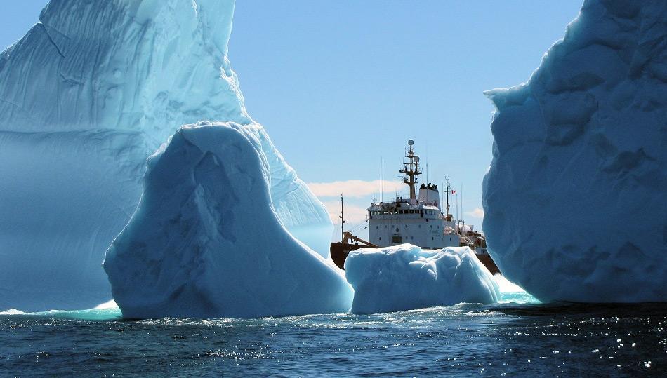 Was gut für den Tourismus von Ferryland ist, lässt Angstschweiss auf der Stirn der Leute der Schiffsverkehrskontrolle entstehen. Bild: CTV News