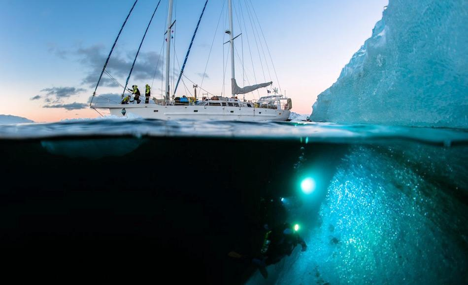 """Die Expedition """"Under The Pole III"""" wird die sogenannte """"Dämmerzone"""" im Arktischen Ozean erkunden und versuchen neue Lebensformen zu finden und bestehende besser erforschen. Bild: Lucas Santucci / Zeppelin Network"""