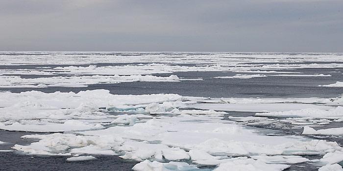 Der Wirbelsturm von Anfang August 2012 hat die Eisfläche gewaltig durchgeschüttelt. Lose Eisschollen schmelzen dadurch schneller.