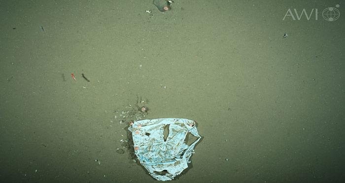 Auf 2500 Meter fehlen das Sonnenlicht und Wasserbewegungen. Unter diesen Bedingungen kann Plastikabfall wahrscheinlich Jahrhunderte überdauern.
