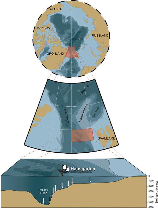 Der HAUSGARTEN besteht aus einem Netzwerk von 17 Stationen die Wassertiefen von 1000 bis 5500 m umfassen. Seit 1999 werden an diesen Stationen alljährlich in den Sommermonaten Probennahmen durchgeführt. Der ganzjährige Einsatz von Verankerungen und Freifallgeräten die als Observationsplattformen am Meeresboden dienen, ermöglicht die Erfassung saisonaler Variationen.