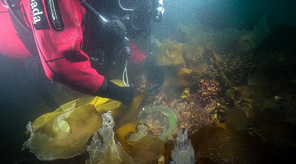 Neben der Schiffsglocke der HSM Erebus wurden noch andere Utensilien aus vergangener Zeit gefunden. © Parks Canada / Thierry Boyer