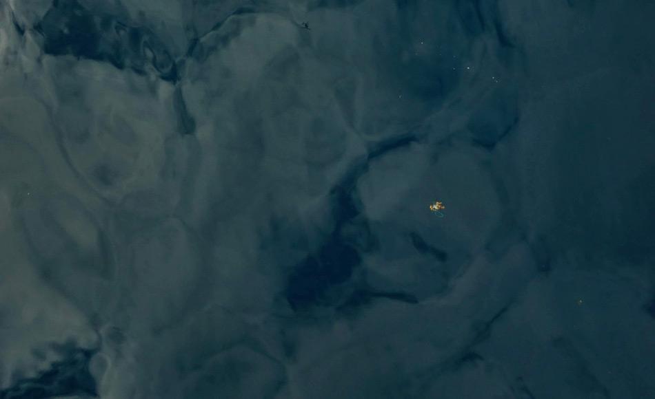 Eine Luftaufnahme des AWI-Multikopters: Alge mit Seilstück im Arktischen Ozean. Foto: Multicopter Kamera, AWI-Tiefseegruppe