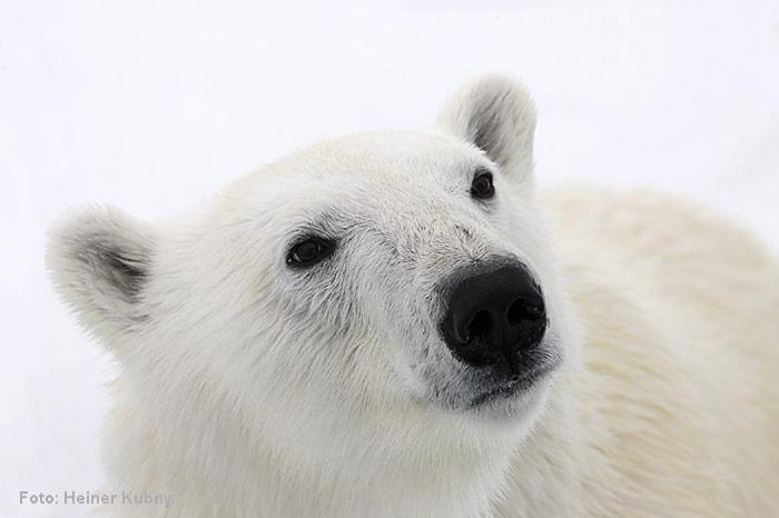 Spitzbergen-023