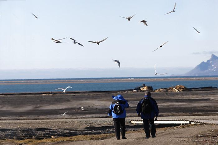 023_spitzbergen_2010