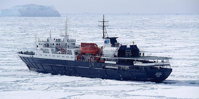MV-Ortelius