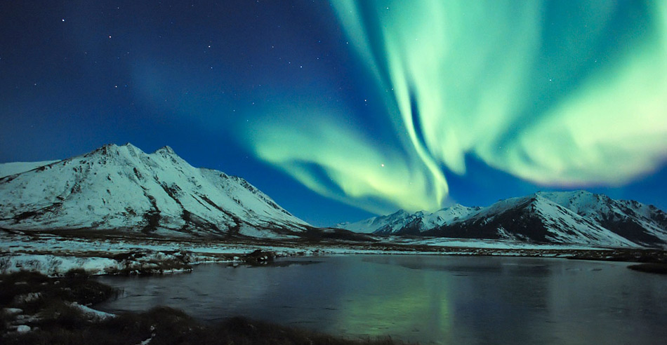 Nicht fehlen dürfen Polarlichte, wenn es um die Arktis geht.